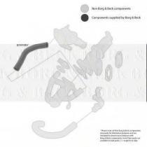 Borg & Beck BTH1007 - Tubo flexible de aire de sobrealimentación